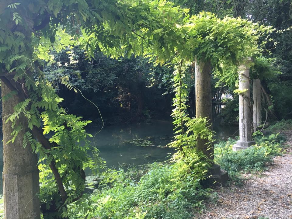 Ferragosto a Parco Bertone: visite gratuite con le GEV e Cicogne in volo tra gli alberi secolari